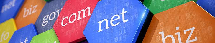 petaluma website design